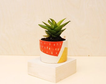 Colorful Planter / Modern Ceramic Plant Pot / Cactus Planter