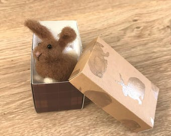Miniature bunny with gift box