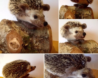 Kit to make a needle felted hedgehog using British wool with full colour, easy to follow instructions - DIY - GIFT