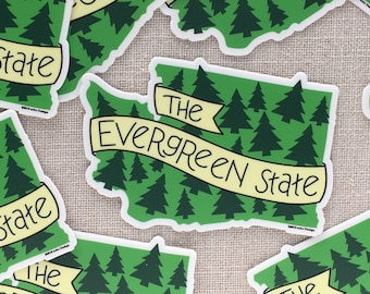 The Evergreen State Vinyl Sticker / Modern Illustrated Washington State Sticker / Washington Bumper Sticker / Hand Lettered / Cool Sticker