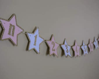 Star Banner, Star Milestone, Twinkle Twinkle Little Star, Pink and Gold Star, Star Birthday, Star Decor, First Year Photo Banner,