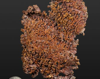 Copper Dendrite