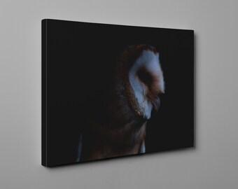 Barn Owl night scene canvas