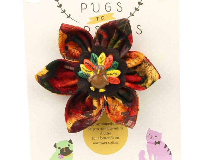 Autumn Dog Bow - Colorful Turkey on Autumn Leaves - Flower - Collar Blossom - Medium Size