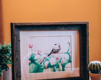 Scissortail - Watercolor
