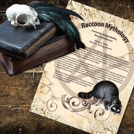 Raccoon Mythology