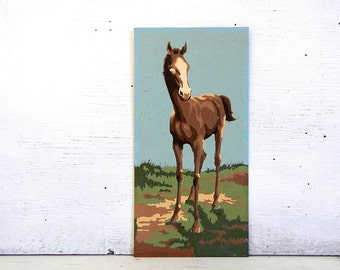 Paint By Number Horse Colt | Pony Horse Paint By Number Painting | Craftmaster Paint By Number Colt