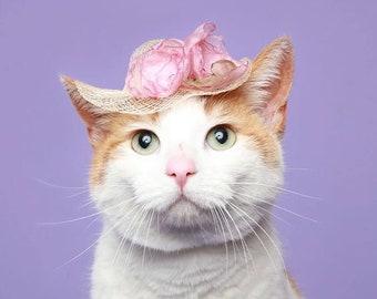 Cat Hat - Elegant Mini Hat - Spring Cat Hat - Spring Bonnet - Cat Bonnet- Kentucky Derby