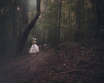 Creepy but Elegant Rabbit in the Trees and Moonlight Fine Art Conceptual Digital Photograph