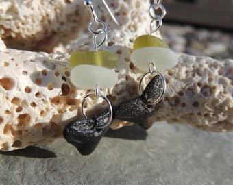 Florida Shark Teeth and French Sea Glass Earrings, Authentic Sea Glass