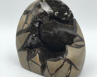 Black Septarian Nodule - From Madagascar