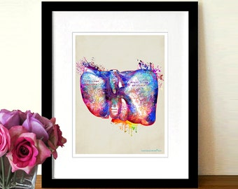 """Watercolor Liver by Christopher Brown, 8.5"""" x 11"""",Anatomy Medical print,Registered Nurse Gift,Gastroenterologist Gift,Organ art,Doctor gift"""