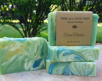 Citrus Cilantro, Natural Handmade Soap, Cold Process Soap, VEGAN