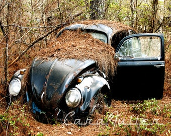 Black VW Bug in Trees Photograph