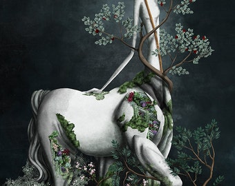 The Sagittarius - 11x8 or 16,5x11 inches fine art print- Signed - Printed by a professional