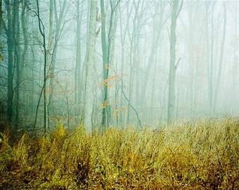 Fog . landscape photography . dreamy decor . woodland art .nature photography . minimalist landscape . photography . blue gray. Field of Fog