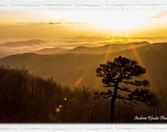 Shenandoah Sunrise - Fine Art Print (Various Sizes) - Landscape, Shenandoah National Park, Blue Ridge Mountains, Golden Sky