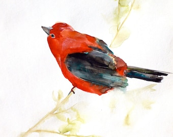 Gift for Her - Bird Art Print - Wall Decor - September - Large 16x20 Print - Red Bird Watercolor - Nature - Animal Art