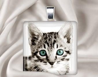 Blue Eyes - Kitten Pendant - Square Glass Tile Pendant Necklace