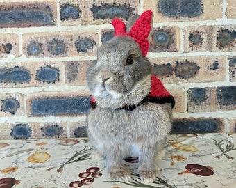 Devil costume for bunnies, pet rabbit costume, pet bunny costume, pet rabbit halloween, pet rabbit clothes, pet rabbit accessories