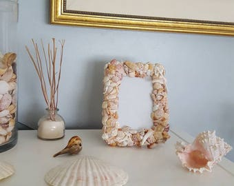 Coastal Handpicked Seashell Picture Frame