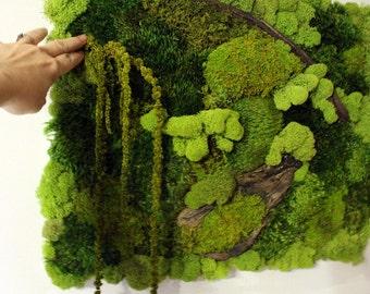 Real Moss Wall Art-16x20 moss frame-Moss Wall hanger-NO WATER needed-Mood & Pillow moss-Recycled wood-Hang vertical or horizontal-OOAK
