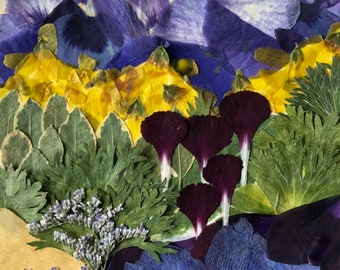 "Flower 11.18 Giclee Print 11""x14"""