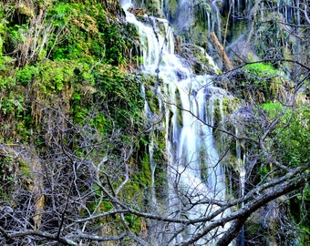 Gorman Falls Waterfall Print