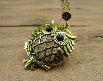 Owl Locket Necklace,Brass Tone,Owl Pendant, Round Photo Locket With a Magnifying Glass-TS066