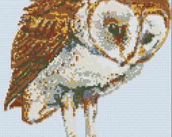 Barn Owl cross-stitch Pattern