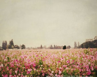 Cosmos Flower Garden Photography, girl baby nursery print, floral wall art