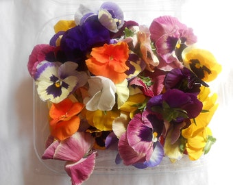 FRESH ORGANIC PANSIES Strong Color Collection Freah or Candied, Edible, Salads, Baking, Drink Toppers, Cupcake Toppers, Cake Decorations 35