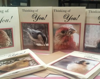 Thinking of You. I take the pictures and with the prints create greeting cards. These cards are blank on the inside for your own greeting.