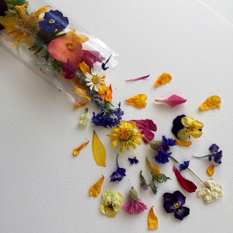 Dried flowers wedding confetti craft supplies lavender for Dried flowers craft supplies