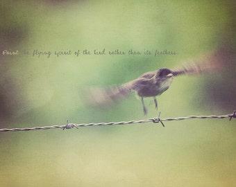 Bird Fluttering, Bird Flying, Flying Bird, Fluttering Bird, Typography Photo, Bird Photo, Bird Art, Bird Print, Green Decor, Bird Gift