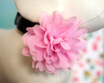 "Large Dog Collar Flower Any Color, Girl Dog Dress Up, Female Collar Bow 4"" Chiffon Bloom Flowers Pink, Red, Blush, Purple, Aqua, Yellow"