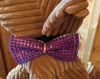 Pets sparkly purple bow tie with ribbon