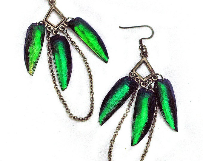 Natural Green Beetle Wing Earrings with Chain Triangle Dangle