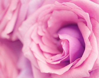 Rose Flower Photography Canvas, Pastel Rose, Large, Pink, Floral Photography