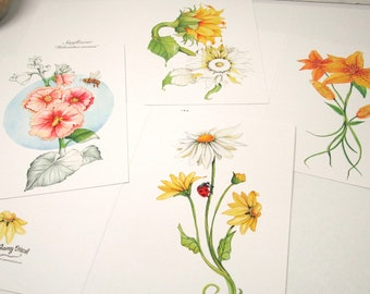 Pack of four floral greeting cards, flower note cards, spring and summer greeting cards,Watercolor Flower Card Set of 4 Blank Inside