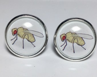 Scientist Drosophila Fruit Flies Earrings Science Astronomy Physics Earrings