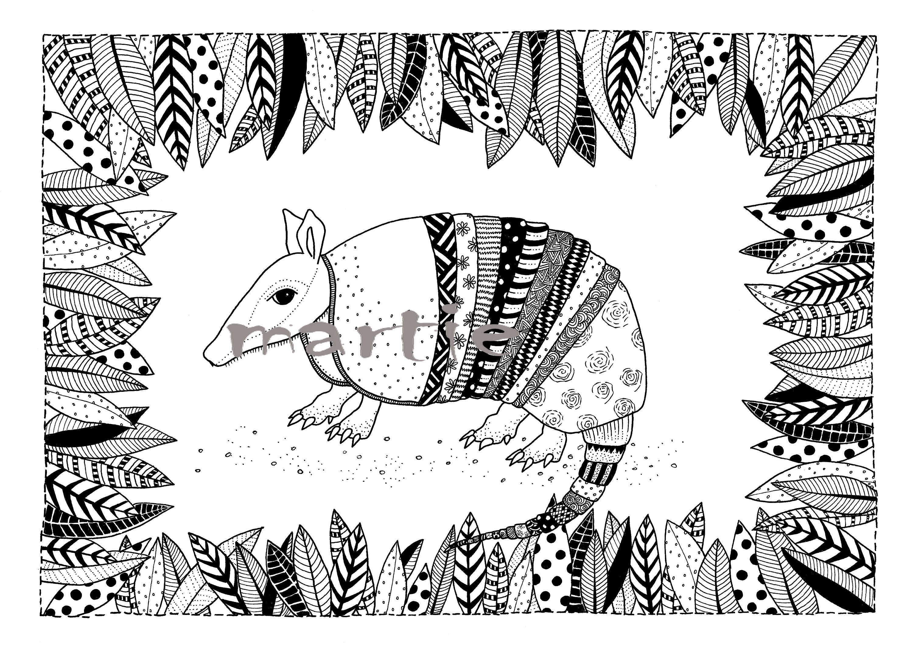 Armadillo - Colouring Page - Adult Colouring Page - Adult Coloring ...