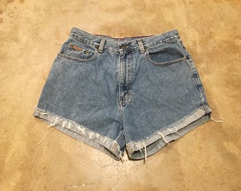 Vintage High Waisted Shorts, Refashioned Denim, Denim Shorts, Cut Off Shorts,