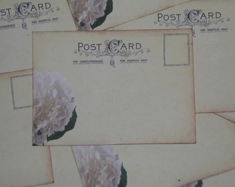 100 Vintage Post Card Wedding Place Card or Wedding Escort Cards - White Hydrangea
