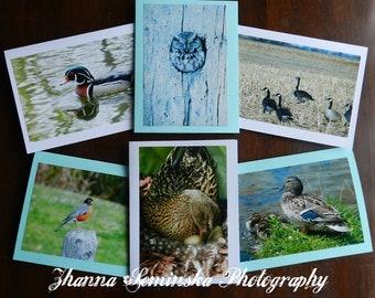 Set of 6 ZhannaSeminskaPhotos greeting cards, original photos by artist Zhanna Seminska