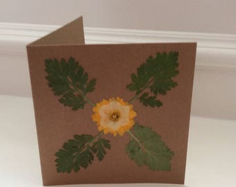 Pressed Flower Greetings Card, Unique, Natural, Blank Inside, Suitable for all Occasions