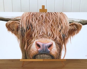 Highland Cow - limited edition canvas print - Highland Cow Canvas - Highland Cow Art