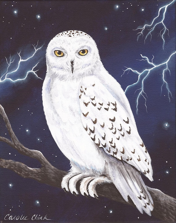 Hedwig 8 X 10 Print Of Original Acrylic Snowy Owl Painting