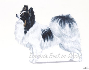 Papillon Dog - Archival Fine Art Print - AKC Best in Show Champion - Breed Standard - Toy Group - Original Art Print