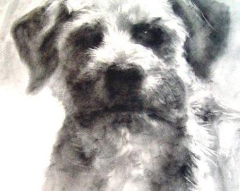 Pet portrait, Custom pet portrait, dog portrait, pencil pet portrait, hand drawn portrait, pet drawing, dog drawing, pet memorial, pet loss,